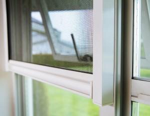 window-300x232